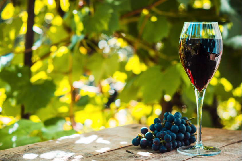 Here's A Toast To Portugal's Wineries & Vineyards